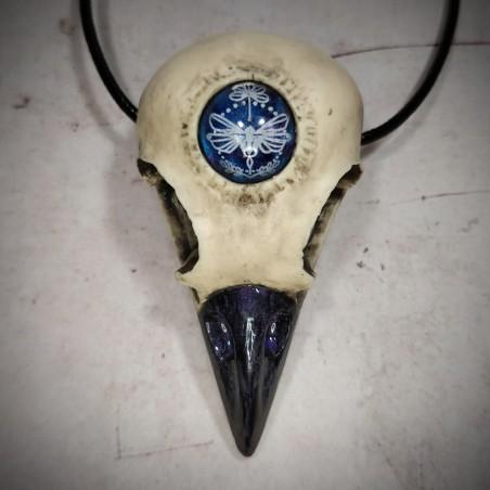collier crâne de corbeau insecte sphinx libellule