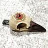 crâne de corbeau, troisième oeil  game of thrones divination vision